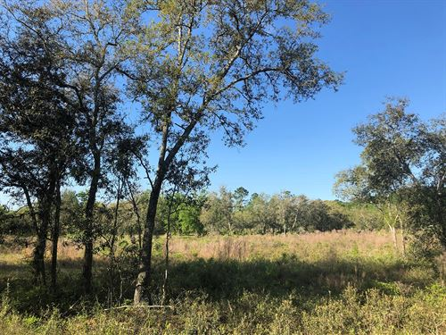 5 Acre Lot In Deer Meadow Phase 2 : Live Oak : Suwannee County : Florida
