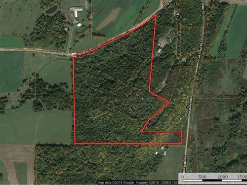 Hunting Property in Upstate NY : Tioga : Pennsylvania