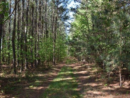 Build, Live, Meditate, Hunt, Fish : Lincolnton : Lincoln County : Georgia