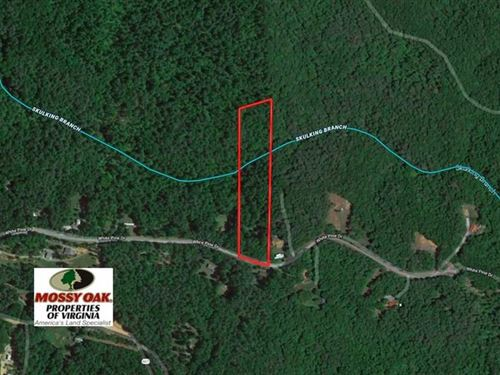 Under Contract, 6 Acres of Huntin : Monroe : Amherst County : Virginia