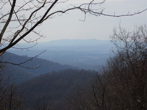 Perfect Hunting Property, Long : Independence : Grayson County : Virginia