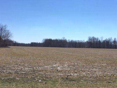 Land For Sale, Clay City, IN : Clay City : Clay County : Indiana