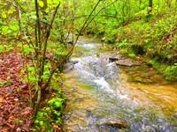 40+/- Acres Featuring Nice Creek : Leesburg : Cherokee County : Alabama