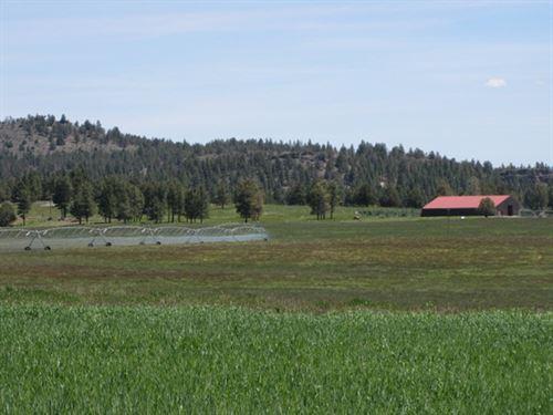 Sycan River Ranch : Beatty : Klamath County : Oregon