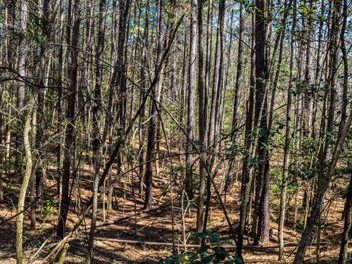22+/- Acres In Woodruff : Woodruff : Spartanburg County : South Carolina
