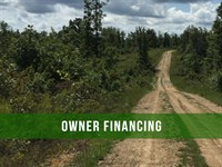 $500 Down On 5 Acres With Power : Winona : Shannon County : Missouri