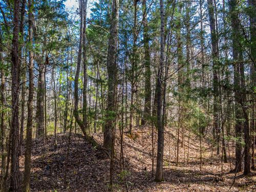29+/- Acres In Woodruff : Woodruff : Spartanburg County : South Carolina