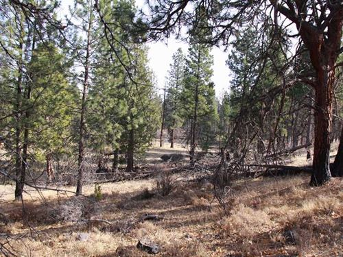 Laubacher Recreational Property : Keno : Klamath County : Oregon
