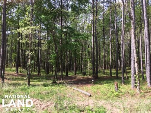Helena Estate & Recreation Tract : Helena : Shelby County : Alabama