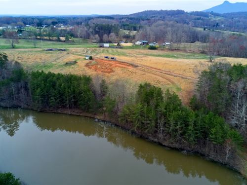 Farm, Pilot Mountain, NC 26.5 Acres : Pilot Mountain : Stokes County : North Carolina