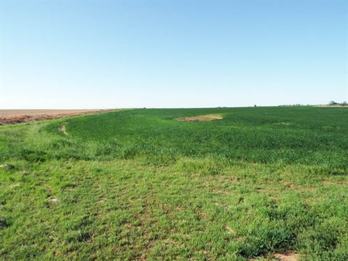 319 Acres Crop & Pasture : Douglas : Garfield County : Oklahoma