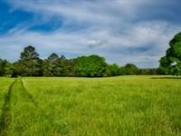 Saluda Farm Acreage : Saluda : Saluda County : South Carolina