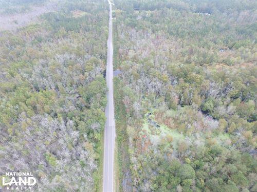 Fayetteville Hunting Land : Roseboro : Sampson County : North Carolina