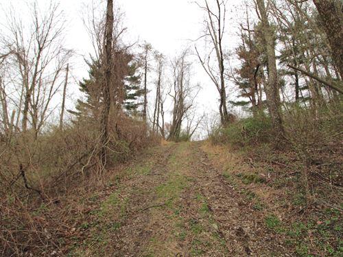 Twp Hwy 400 : Sardis : Monroe County : Ohio