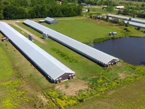 Four House Broiler Farm With 30 Ac : Rover : Johnson County : Arkansas