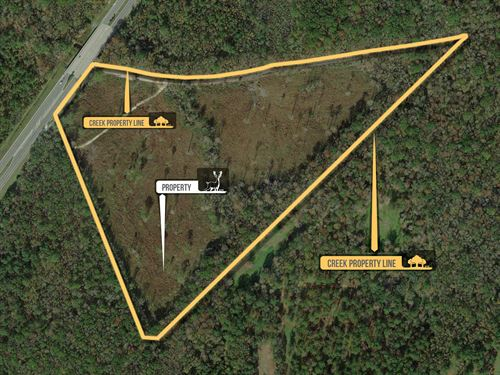 Sr 200- 39.44 Acres : Callahan : Nassau County : Florida