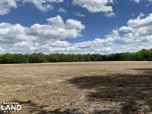 Wiggins Mill Farmland, Timber, & Hu : Wilson : North Carolina