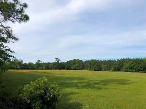 Lake City Florida Farms for Sale : FARMFLIP Flooding Lake City Fl Mobile Home on home macon ga, home jacksonville fl, home orlando fl, home bonita springs fl,