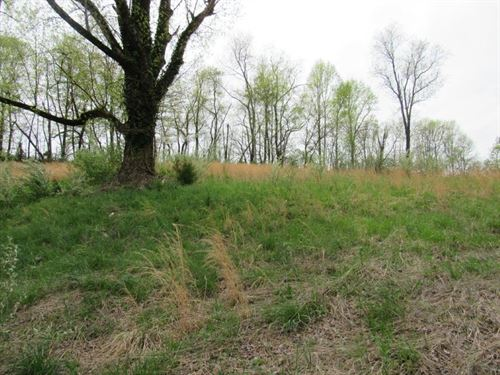 Commercial Land Tract Auction : Stuart : Patrick County : Virginia