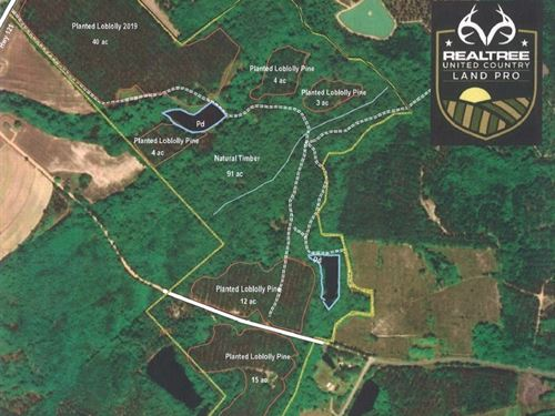 219 Acre Wooded Tract Metter : Metter : Candler County : Georgia