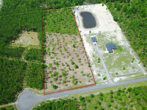 Lot 108- Deep Creek : Bryceville : Nassau County : Florida
