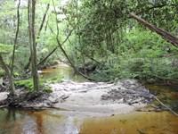 Bruce Creek Tract : Defuniak Springs : Walton County : Florida
