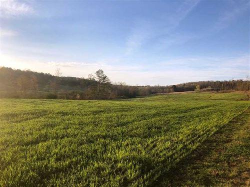 Lamar County, AL 78 Acres : Guin : Lamar County : Alabama