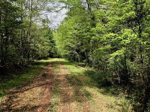 Under Contract, 26.5 Acres of Rec : Pittsboro : Chatham County : North Carolina
