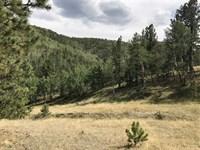 Skaguay Reservoir Retreat : Victor : Teller County : Colorado