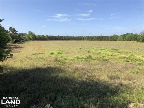 Brunson Open Fields Farm / Hunting : Brunson : Hampton County : South Carolina