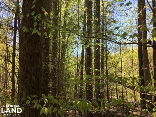North Greenville Creeks & Hardwoods : Travelers Rest : Greenville County : South Carolina