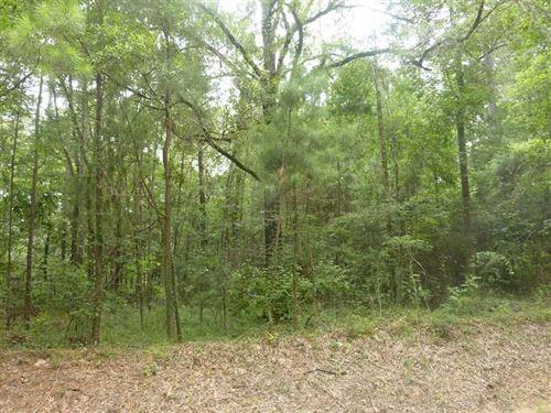 Evangeline Road Tract 2, Evangelin : Oakdale : Evangeline Parish : Louisiana