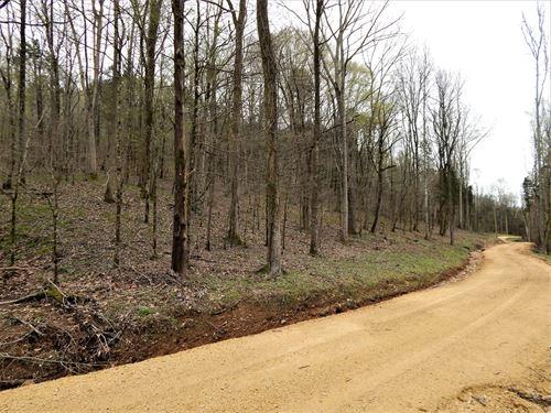 Wayne County, Tn, 22.24 Ac, Hunting : Clifton : Wayne County : Tennessee