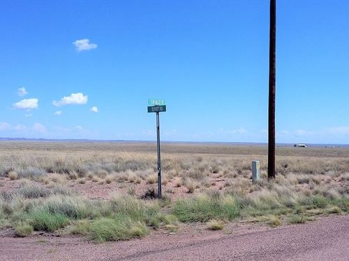 Beautiful Land, 4 Adjoining Lots : Sun Valley : Navajo County : Arizona