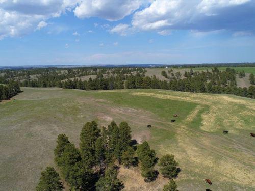 Pine Ridge Elk Ranch Parcel 1 : Crawford : Dawes County : Nebraska
