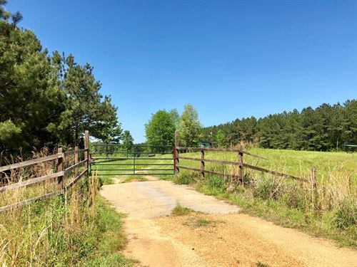 Rare 10 Ac With Camp : Woodville : Wilkinson County : Mississippi