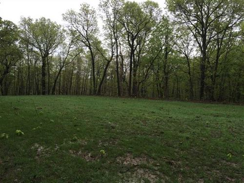 Price Reduced, 140 Acres in St : Schell City : Saint Clair County : Missouri