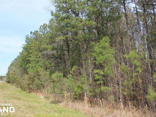 Bonneau Large Acreage Estate : Bonneau : Berkeley County : South Carolina