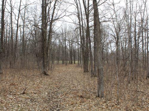 Land For Sale Motley : Motley : Cass County : Minnesota
