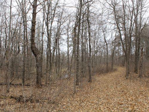 80 Acres Land For Sale Cass County : Motley : Cass County : Minnesota