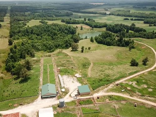 417 Acre Farm, Barns, Ponds : Atwood : Carroll County : Tennessee