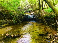 20+/- Acres With Flowing Stream : Tallapoosa : Haralson County : Georgia