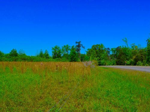 Arkadelphia Land, Manchester, Joan : Arkadelphia : Clark County : Arkansas