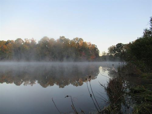 Impressive Property Near Auburn : Auburn : Lee County : Alabama
