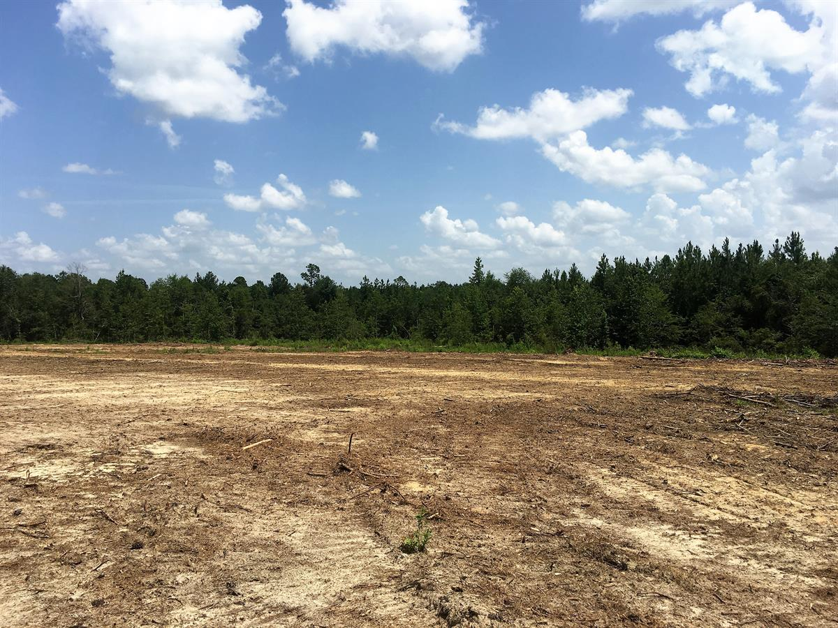$0 Down & Owner Financed : Farm for Sale by Owner : Kite : Emanuel County :  Georgia