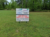 Tract C Talladega 27+/- Acres : Talladega : Talladega County : Alabama