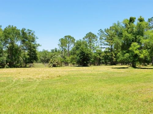 Gorgeous 6 Ac, Of Pasture, Well : Fort Mc Coy : Marion County : Florida