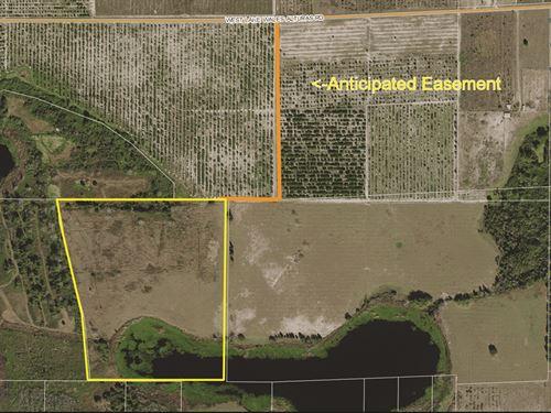 Gadau Lake 33 Acres : Bartow : Polk County : Florida