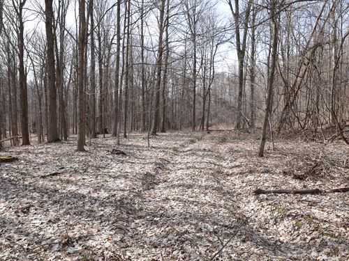 Massive Road Frontage And Woods : Camillus : Onondaga County : New York