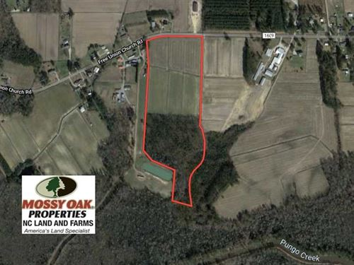 30 Acres of Investment Farm And Ti : Pinetown : Beaufort County : North Carolina